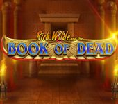 Book of Dead Play'n GO Spielautomaten