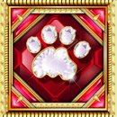 Cats Scatter Symbol