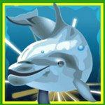 Dolphins Pearl Delphin